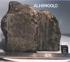 Метеорит ALH84001. Фото с сайта ALH84001 lpi.usra.edu