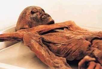 """Симилаунский ледяной человек """"Отци"""". Фото с сайта www.archaeologiemuseum.it"""
