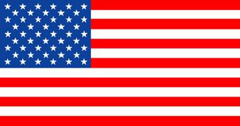 Идея ежегодно справлять праздник Флага, по всей видимости, восходит к...