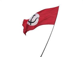 Bandiera del Partito Nazional-Bolscevico di Eduard Limonov