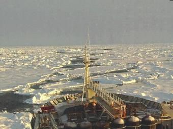 Арктическая экспедиция. Фото с сайта aari.ru.
