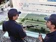 Испанские полицейские. Фото AFP