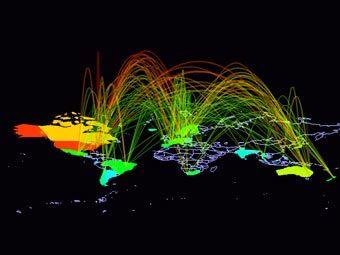 Маршруты интернет-трафика на карте мира. Иллюстрация с сайта theasa.org
