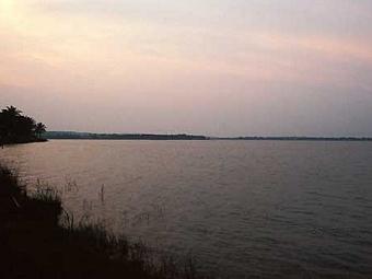 Озеро Виктория в Уганде. Фото с сайта www.aquapress-bleher.com
