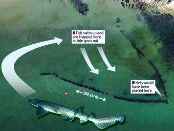 С помощью Google Earth обнаружили гигантскую ловушку для рыб (фото)