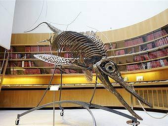 http://img.lenta.ru/news/2009/04/08/prehistoric/picture.jpg