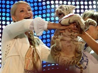"""Юлия Тимошенко с тигренком. Фото А. Прокопенко, """"Сегодня"""""""