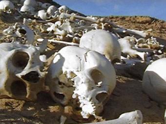 Найденное археологами массовое захоронение в Сахаре. Фото братьев Кастильони