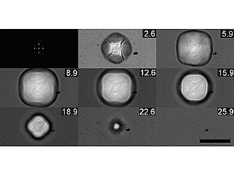 Фазы существования квадратного пузыря. Фото авторов исследования