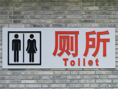 Китайских рабочих выселят из общественного туалета