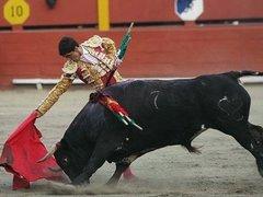 Испанский матадор вышел победителем из боя с шестью быками