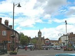 Любвеобильные утки поставили под угрозу туристический сезон в Йоркшире