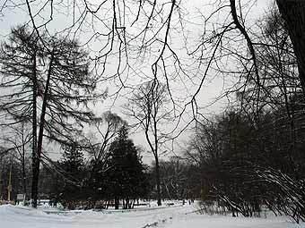 "Вид на парк ""Сокольники"". Фото Алексея Евгеньевича, MosDay"