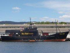 Австралийская полиция обыскала судно защитников китов