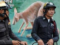 Бангкокский зоопарк эвакуировал зверей перед митингом оппозиции