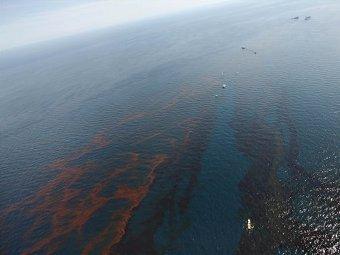 Следы нефти у побережья Луизианы. Фото ©AP