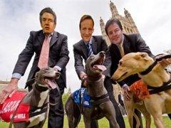 Обнародованы окончательные результаты выборов в Великобритании