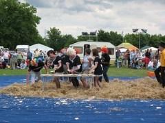 В Великобритании прошел чемпионат мира по метанию пирогов
