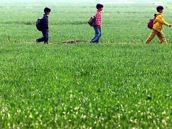 Китайские школьники. Фото ©AFP