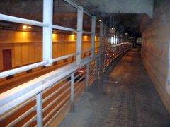 В тоннеле на Волоколамском шоссе пройдет выставка