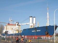 В Камеруне освобождены двое российских моряков