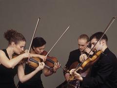 Авиакомпания предложила музыканту отправить виолончель первым классом