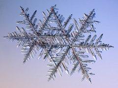 В Лапландии выпал снег
