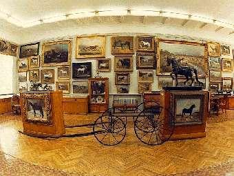 Экспозиция музея коневодства в Тимирязевской академии.