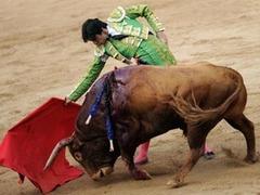 В Каталонии решили запретить корриду