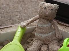Потерявшийся игрушечный медведь обзавелся страницей на Facebook