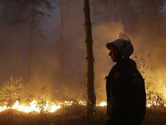 Лесной пожар в Подмосковье. Фото ©AFP
