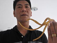 Китаец отвадил себя от драк с помощью длинных ногтей