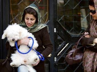 Жительница Тегерана с собакой. Фото ©AFP