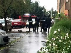 Вооруженный дробовиком словак устроил стрельбу в Братиславе