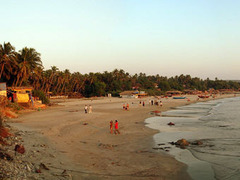 Пляжи Гоа залило нефтью