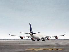 Скандинавская авиакомпания организует первую гей-свадьбу на борту самолета