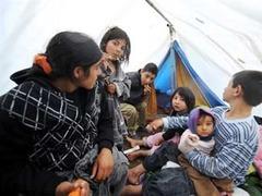 Франция проигнорировала требование Европарламента прекратить высылку цыган