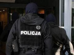В Польше за детскую порнографию арестовали более ста человек