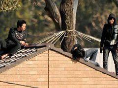 Китайские беженцы забрались на крышу миграционного центра в Сиднее