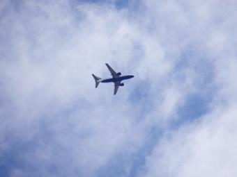 Дебош в самолете