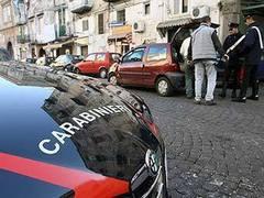 Итальянская полиция отправилась на поиски льва