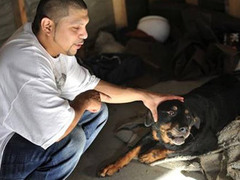 Собака ожила после двух смертельных инъекций