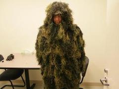 Человек в костюме травы попытался попасть в музей через дыру в стене