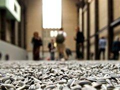 Лондонская галерея запретила топтать фарфоровые семечки