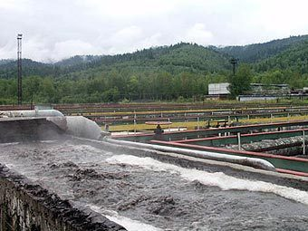 Байкальский ЦБК. Фото с сайта savebaikal.org