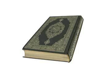 Британскую школьницу арестовали за ролик с сожжением Корана