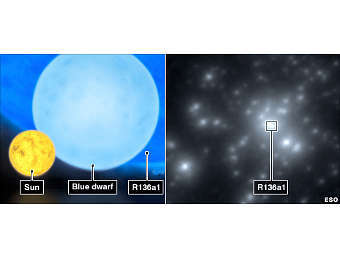 Сравнение размеров различных звезд (слева). Желтым показано Солнце, а темно-синим - R136a1. Изображение ESO/M. Kornmesser