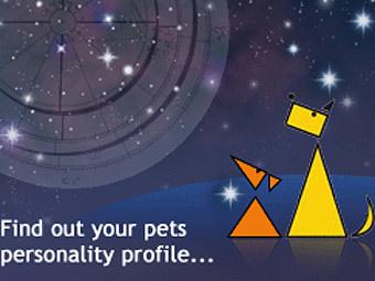 Астрологическая служба для животных появилась в Шотландии