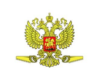 "Логотип проекта ""РосПил"""