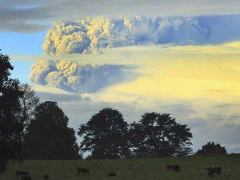 Столб пепла над вулканом Пуйеуэ